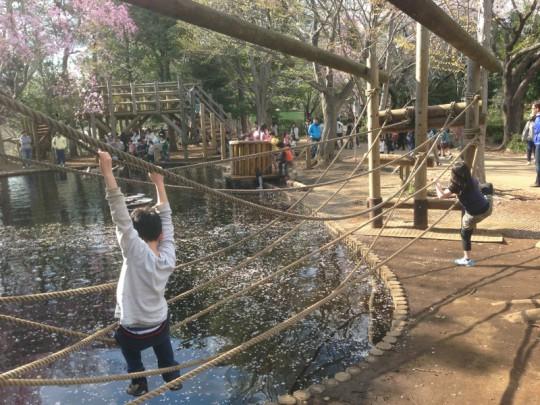 ふなばしアンデルセン公園のアスレチック(池)