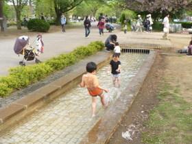ふなばしアンデルセン公園の小さい池