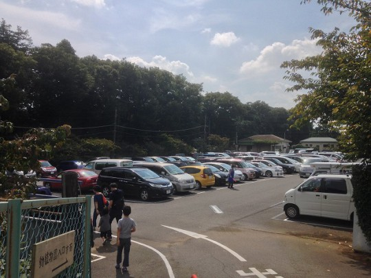 市川市動植物園-駐車場混雑状況